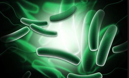 胃腸科と投資