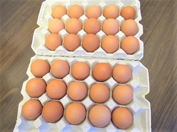 ユニコーン(UNICORN)株主優待の卵
