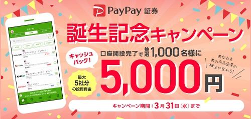 PayPay(ペイペイ)証券のIPOルール