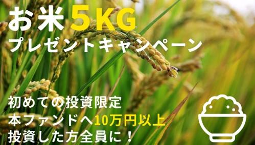 WARASHIBE(ワラシベ)キャンペーンお米5キロ