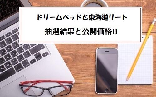ドリームベッドと東海道リート投資法人IPO抽選結果